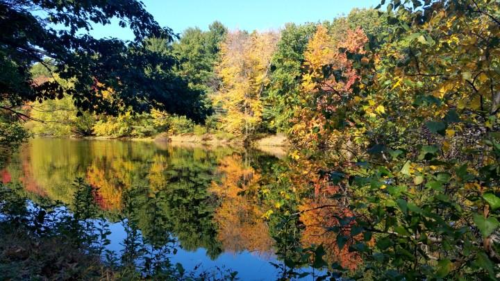 19 Mine Falls Park New England Fall.jpg