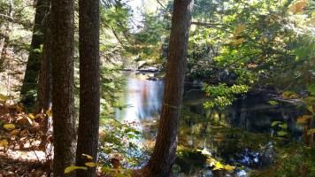 10 Wildcat Falls River New England Hiking