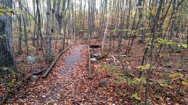 24 Horse Hill Nature Preserve New England Fall Hiking
