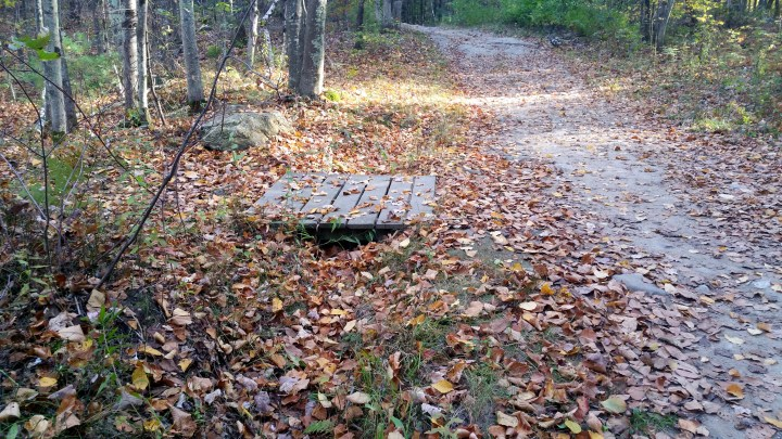 5 Horse Hill Nature Preserve Hiking Trail in the Fall.jpg