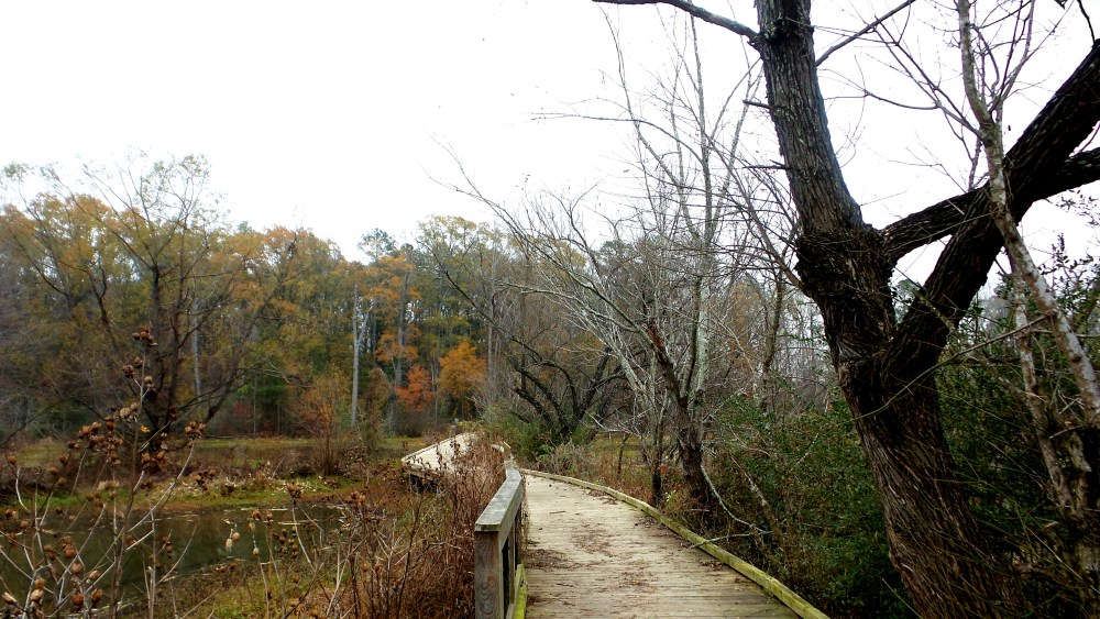22 Constitution Lakes Nature Photography.jpg