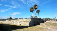 13 Castillo de San Marcos Palm Trees