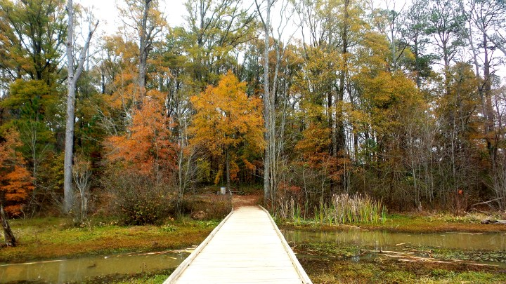 Hiking Constitution Lakes in the Fall