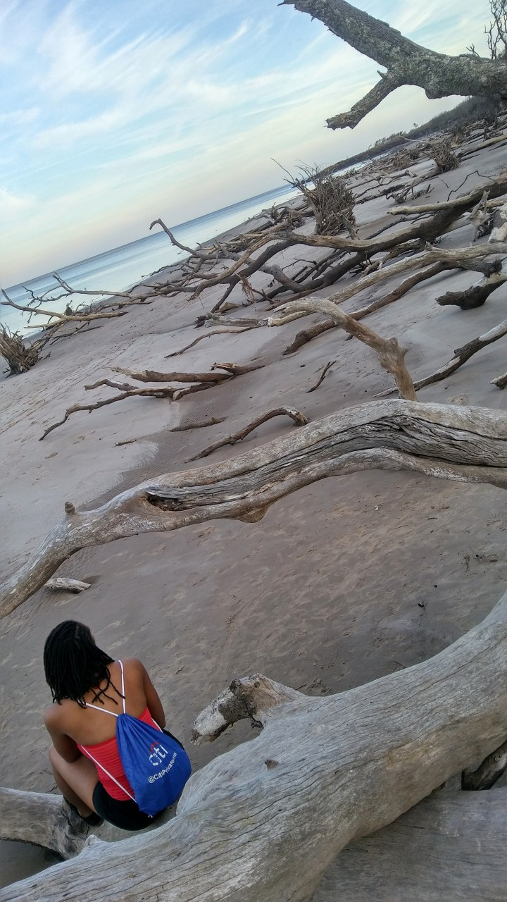 3 Alexis Chateau Blackrock Beach Amelia Island
