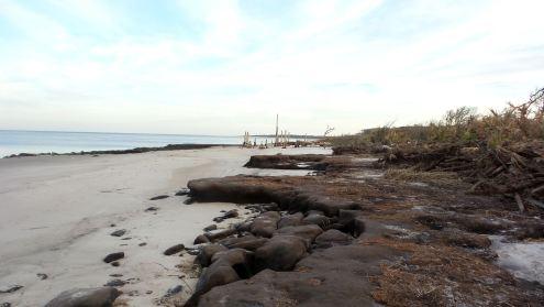 38.5 Blackrock Beach Shoreline