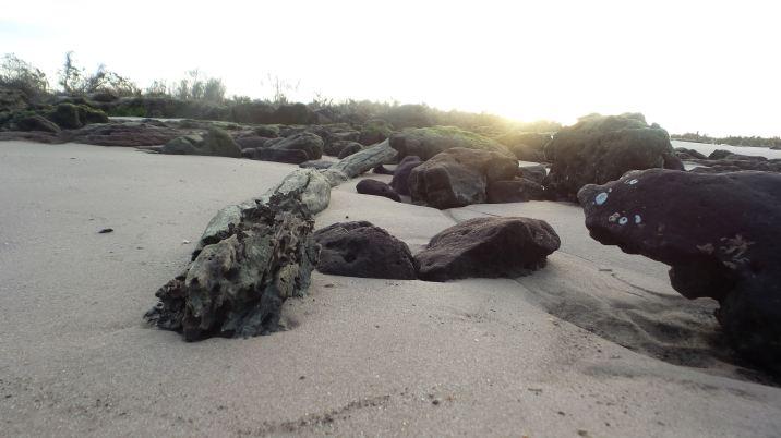 44 Blackrock Beach