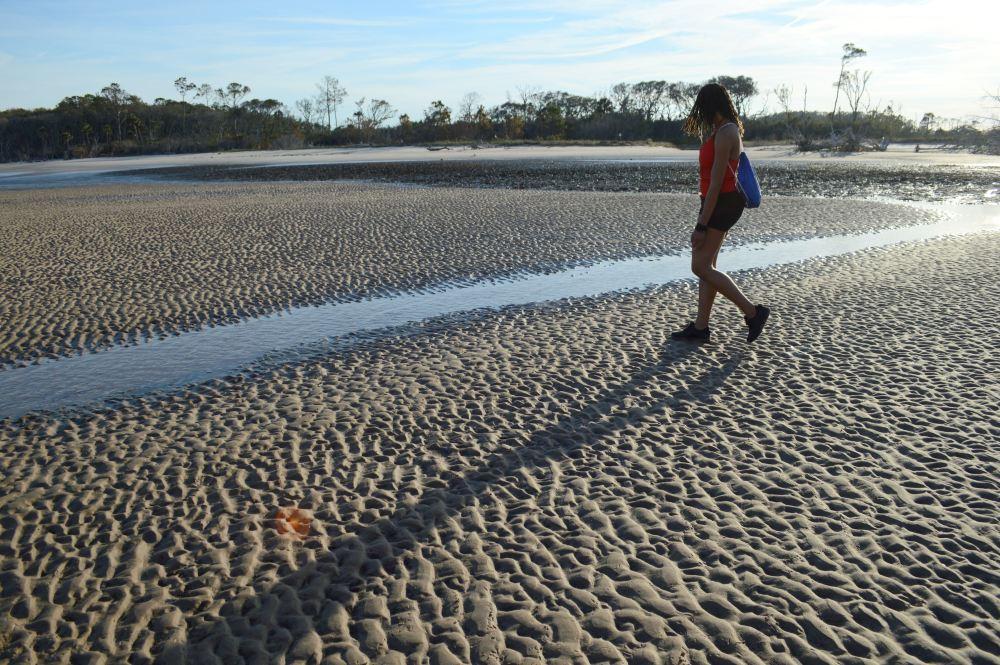 60 Alexis Chateau Beach Traveler.JPG