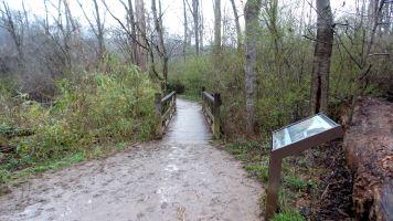 16 East Palisades Hiking Trail