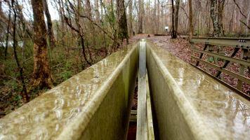 31 East Palisades Bridge Rails Rain