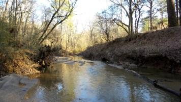 35 Cascade Springs Nature Preserve ATL GA