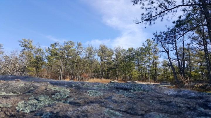 5 Stone Mountain Atlanta.jpg