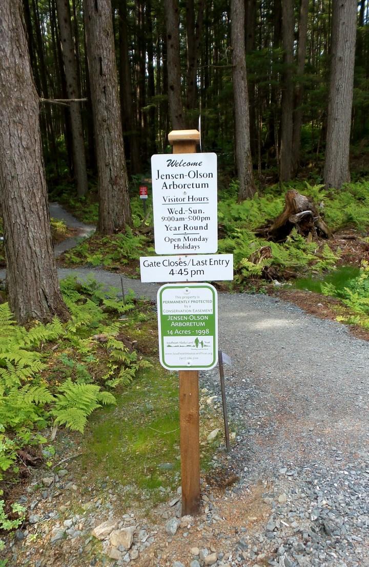 01 Jensen Olson Arboretum Alaska Flowers.jpg