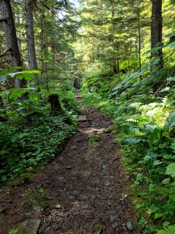 11 Hiking trail to Kayaker's Beach Juneau Alaska