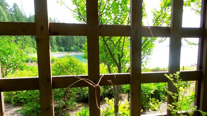 17 Jensen Olson Arboretum Alaska Flowers