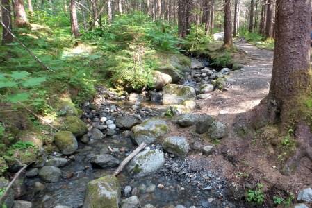 19 West Glacier Trail Juneau Alaska