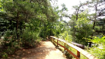 10 High Falls State Park Hiking Trails