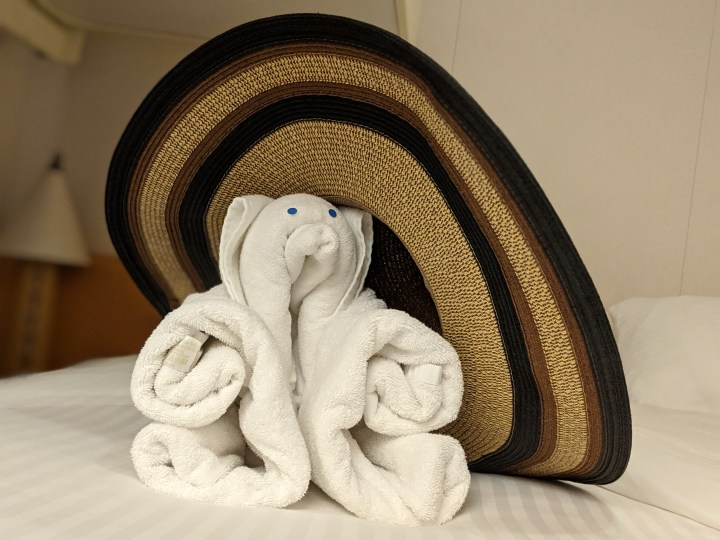 Carnival Magic Towel Teddy.jpg