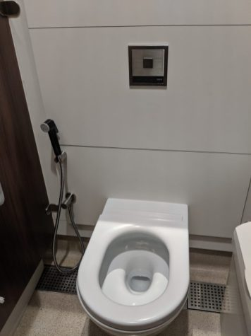 Bathroom Bidet in Dubai 2