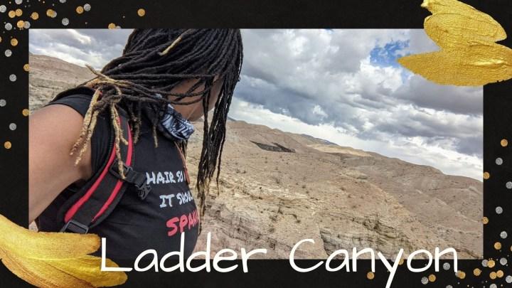 Travel Vlog | Desert Offroading in the FJ Cruiser | Hiking at Ladder Canyon