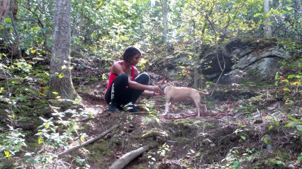 hiking hiking trails roswell mill travel