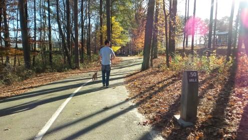twotonetheartist dog nature hiking trail