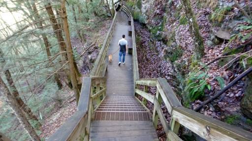 twotonetheartist dog hiking trail
