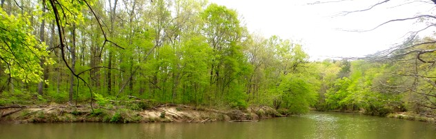hiking trail travel explore sweetwater creek state park panoramic photography