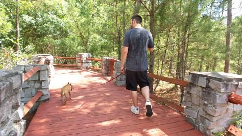 TwoToneTheArtist Panola Mountain State Park 2
