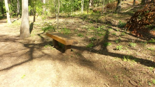 7 Bench on Depende Park Hiking Trail