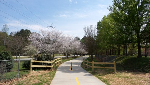 Clayton County International Park Spring