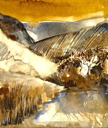 Gosforth Sike, Cumbria Wildlife Trust Inks Image Size 12 x 15 cm £85 framed