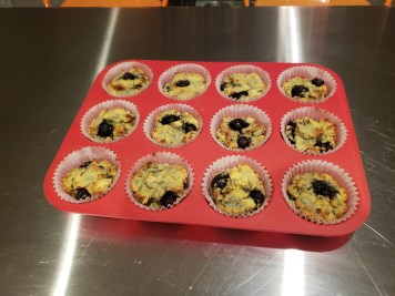 Final - Coconut Flour Blueberry Muffins