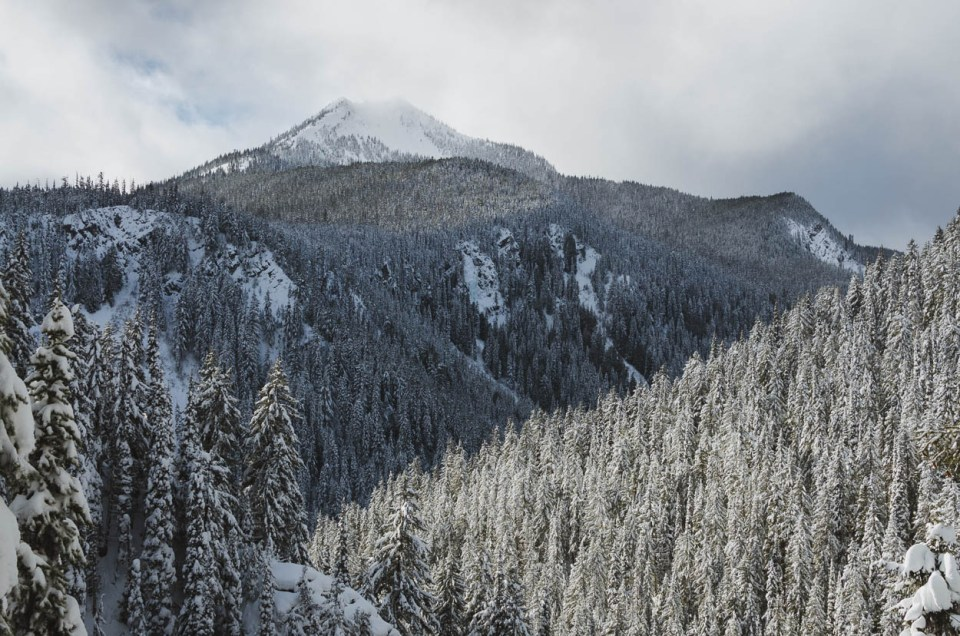 Snow covered trees and mountains in Manning Park