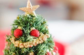 Alexandra Michelle Photography - Christmas Craft-2