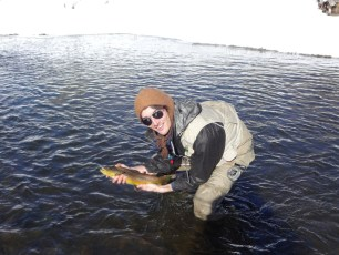 12/29/12: Cold water, big browns