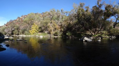 10/22/14: Putah Creek, CA