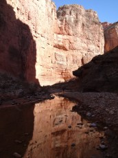 kanab_pt2_flavor_rotated