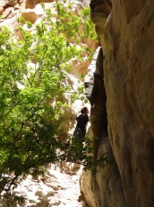 Climbing through the cononino sandstone