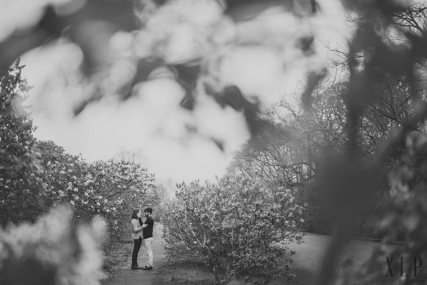 Arnold Arboretum Lilac Engagement Photos (15)