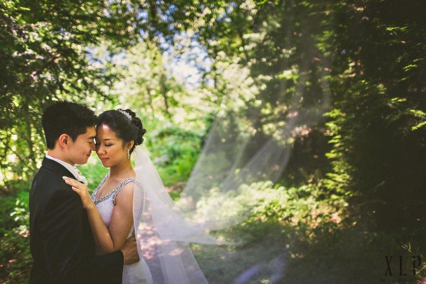 Lexington wedding portraits