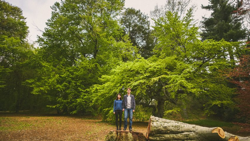 Couple standing on tree stump