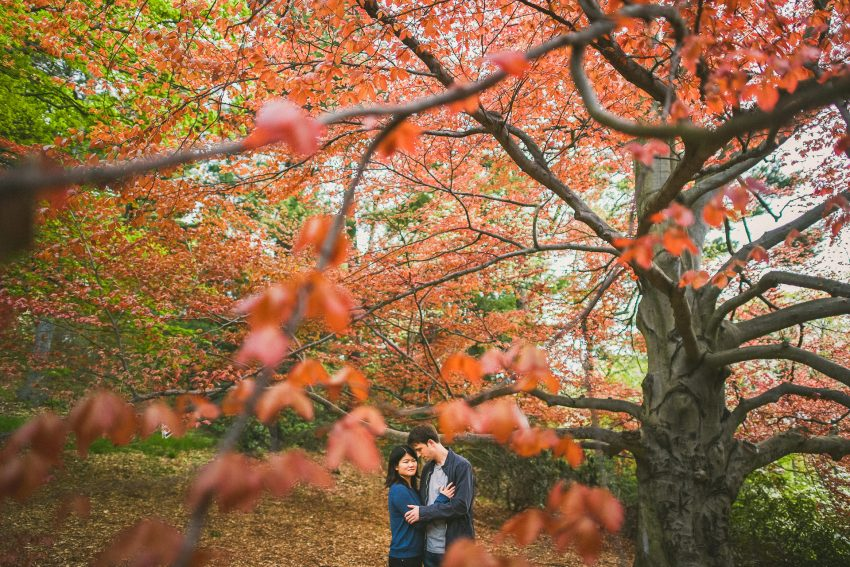 Red tree couple portrait