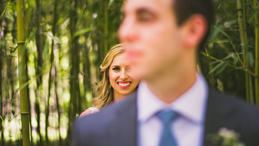 Wedding portraits in bamboo