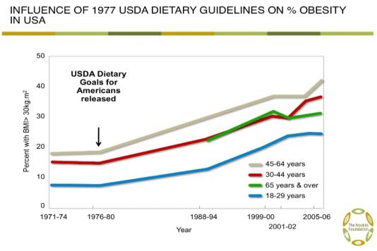 Obesity Rise