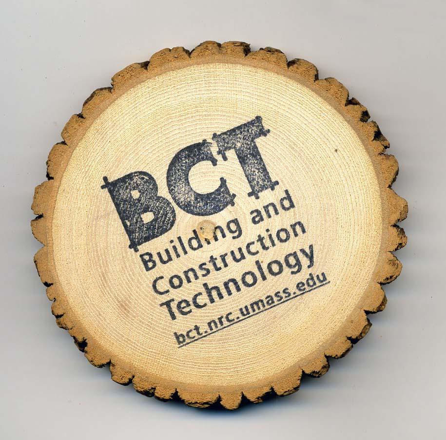 BCT Promotional Wood Disks