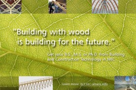 Building with wood display