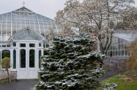 Smith College greenhouse