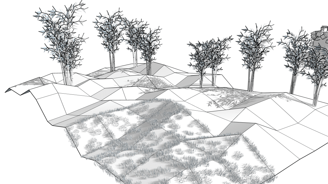 Randomizing vertices and random placements
