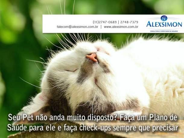 ale0710
