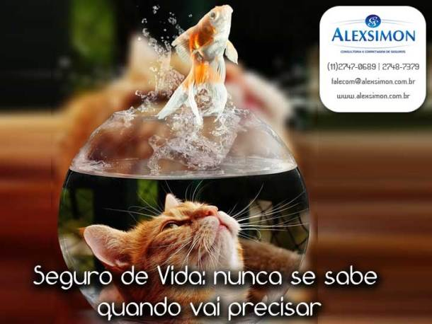 ale030217